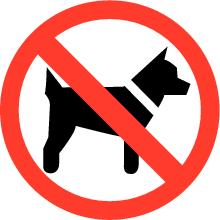 Geen honden op de camping